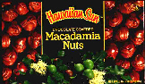 Most Delicious Chocolate Macadamia Nuts in the world